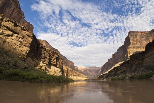Conservationists are concerned upper-basin state efforts to divert water could hurt ecosystems dependent on the Colorado River. (Pixabay)