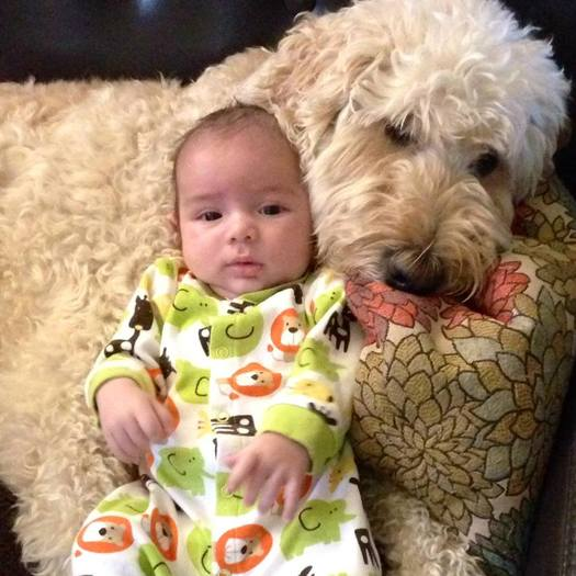 Kids may need to get a pet and spend more time playing outdoors to protect themselves against allergies. (Mike Baca)