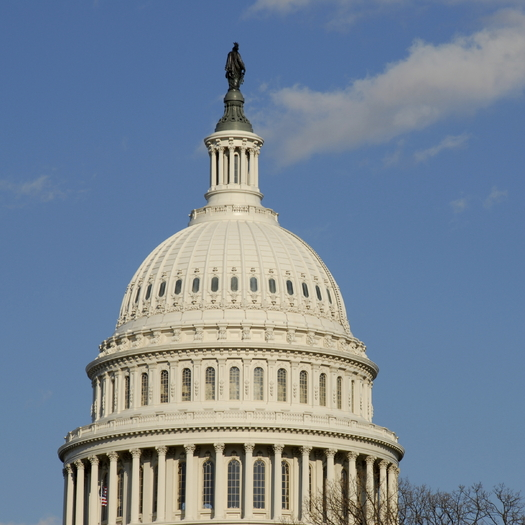 According to a budget watchdog group, the current House budget plan does not line up with most Americans' expectations of where they want their tax dollars spent. (iStockphoto)