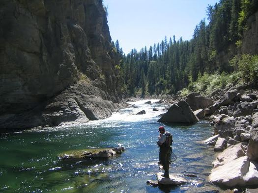 Hunting and fishing groups are cheering the defeat in the U.S. Senate of an amendment that would have lifted certain EPA protections from smaller streams. (Montana Wildlife Federation)