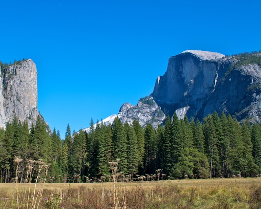 All national parks, including Yosemite, are free this weekend for Earth Day and National Park Week. The U.S Interior Secretary is calling for increased funds to maintain the parks. (schick/morguefile)