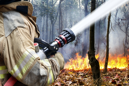 Forecasters are predicting a larger number of wildfires in Arizona and other southwestern states this season because of high temperatures and dry condition. (toa55/iStockphoto)