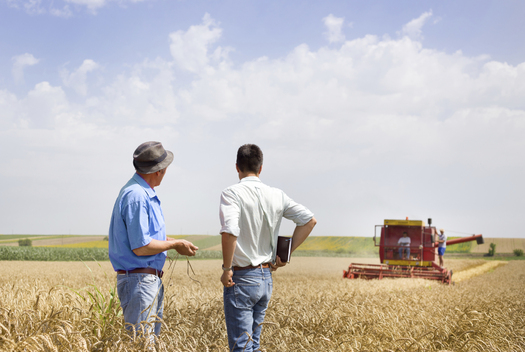 As North Dakota voters prepare to weigh in on the state's corporate-farming law, family-farm advocates hold public discussions in four towns this week. (iStockphoto)