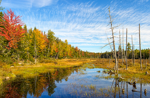 Mainers gave feedback in Millinocket and at the University of Maine in Orono on Monday about the proposed North Woods National Monument (Mark Picard)