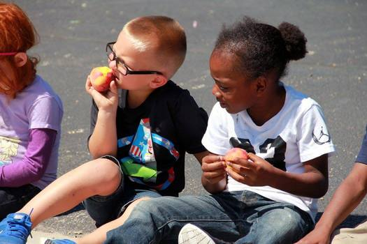 New numbers show Illinois lags behind most of the country in providing free or reduced cost summer meals for children from lower-income families. (Illinois State Board of Education)