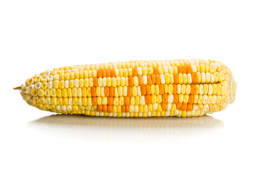 Vermonts GMO Labeling Law Has National Implications / Public News Service