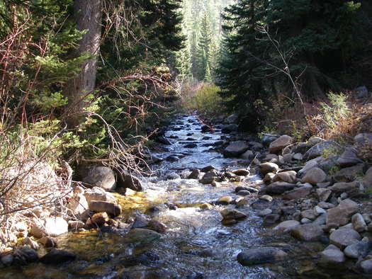 Grimes Creek, site of the proposed CuMo mine north of Boise. (John Robison, Idaho Conservation League)