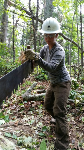 Southern Appalachian Wilderness Stewards are working to clear parts of the Appalachian Trail in northeast Tennessee. (Bill Hodge)