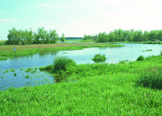 Newly approved clean water rules might actually increase pollution in Iowa waterways, says the Iowa Environmental Council. (USDA.org)
