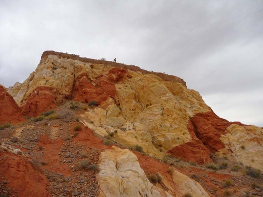 Conservation groups want to preserve Gold Butte, near the Bundy Ranch, as a national monument. (Friends of Gold Butte)