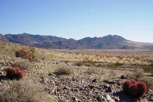 La reserva nacional Mojave Trails est� protegida bajo el nuevo Plan de Conservaci�n de la Energ�a Renovable del Desierto, finiquitado este mi�rcoles. (Bryn Jones)