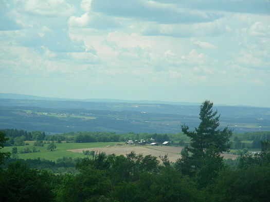 Finger Lakes National Forest is part of the 104,000 acres of federally managed land in New York.  (U.S. Forest Service)