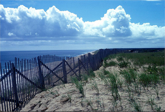The Cape Cod National Seashore is among the 60,000-plus acres of federally-managed public land in Massachusetts. (U.S. Fish and Wildlife Service)