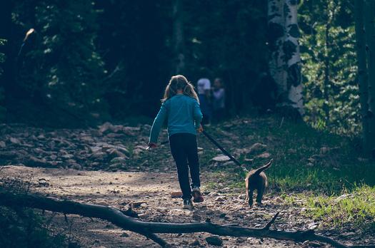 More Granite State children had health insurance in 2015 compared to 2013. (Brian Brown/Flickr)