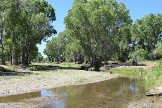 San Pedro Riparian Conservation Area is one of many sites managed by the Bureau of Land Management in Arizona. (Barbara Hawke/Arizona Wild)
