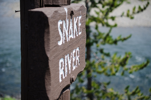 Groups are asking federal agencies to halt investment in four Snake River dams that could be torn down.(m01229/Flickr)