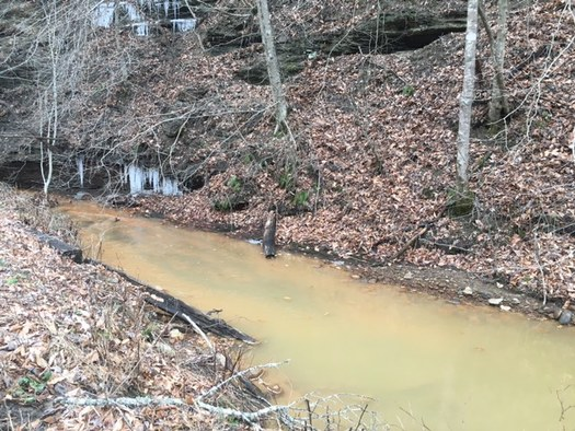 Conservationists are fighting back against attempts to gut new regulations that attempt to stop future pollution of streams such as this one that spills into the Kentucky River. (Tarence Ray)