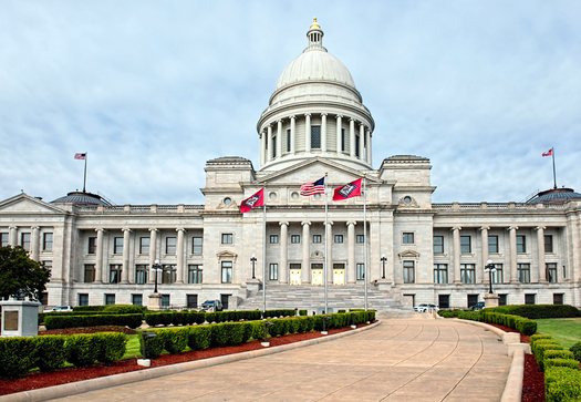 The Arkansas Legislature has passed an anti-abortion bill banning a common medical procedure and allowing family members to block a woman from having it. (mj00007/iStockphoto)