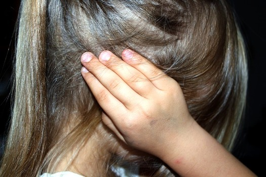 The Center for Judicial Excellence reports dozens of children in the United States were killed by their custodial parent, after a court ignored abuse claims by a protective parent. Source: Center for Judicial Excellence (Pixabay)
