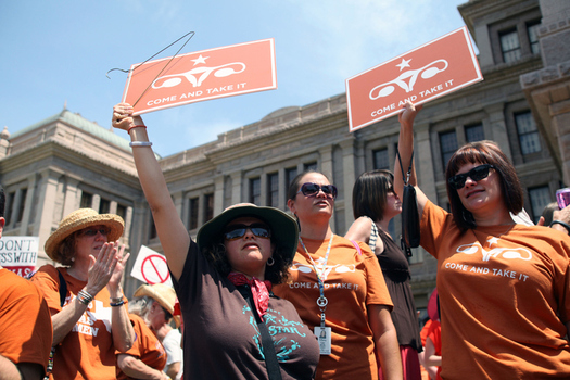 Pro-choice protesters make their opinions known at a rally in front of the Texas state Capitol. (vichinterlang/iStockphoto)
