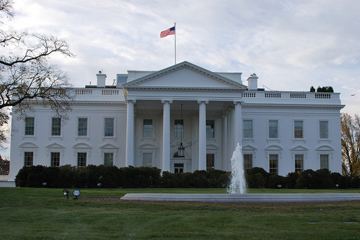 The 25th Amendment provides guidance for what to do should a U.S. president become incapacitated. (Karen Neoh/Flickr)