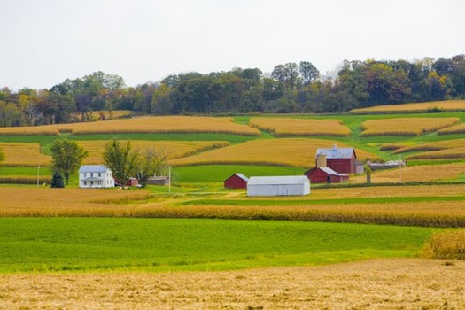 Small farmers in Illinois are convinced that mergers of giant chemical companies would hurt them financially. (Illinois.gov)