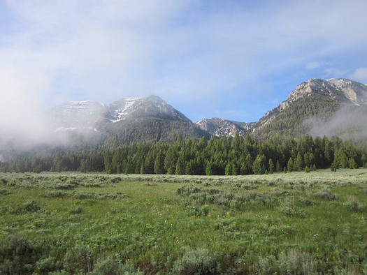 A new environmental scorecard shows a big difference in priorities for Montana's congressional delegation. (Pat Fosse/BLM)