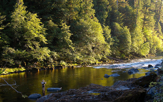 A bill has been introduced in Congress to protect part of the North Umpqua River, which is renowned for its fly-fishing opportunities. (BLM/Flickr)