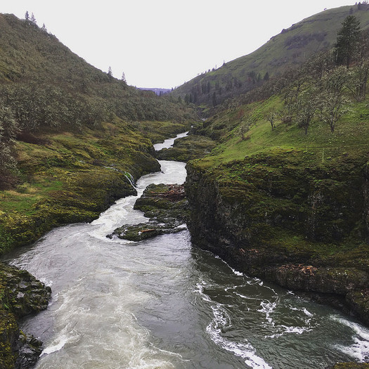 The Nature Conservancy has identified an area near the Klickitat River as having the natural ability to sustain itself as the effects of climate change worsen. (Ferrous B�ller/Flickr)