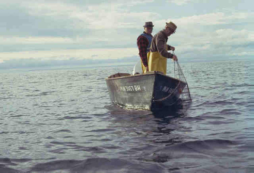 Funding for programs that work with fishermen to keep invasive species out of the Great Lakes is threatened. (seagrantumn.edu)
