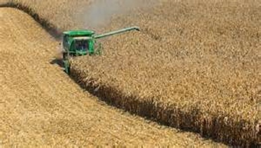 Grasslands are being destroyed in states where ethanol production is high. (Dept. of Agriculture)