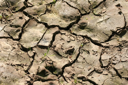 Experts say drought linked to climate change has led to instability worldwide, which threatens U.S. national security. (Hotblack/Morguefile)