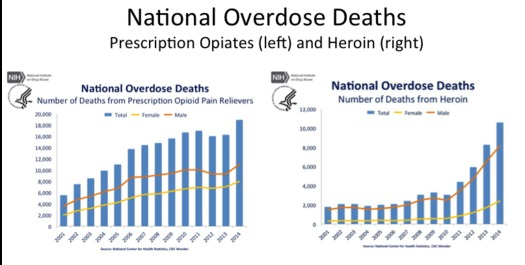 With overdose deaths rising in West Virginia and around the country, scientists are arguing for treating drug addiction as a health issue rather than a crime. (NIH)