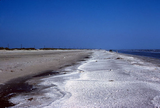 A spill in the Atlantic could coat beaches from Savannah to Boston with oil. (USGS)