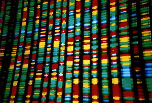 A person's genetic profile could hold the key for precision cancer treatment. (Andy Leppard/Flickr)