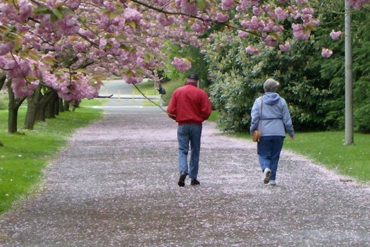 Incorporating additional movement into daily life can help reduce the risk of diabetes for folks age 65 and older. (Mtn and Sea/Flickr)