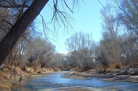Conservation advocates say the San Pedro River may be endangered by a water bill passed this year, part of the reason most of the legislators received an F on the annual Sierra Club Environmental Report Card.(Wikimedia Commons)