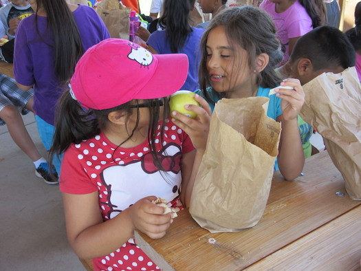 The federal Summer Food Service program provides funding for children's meals while school is out. (School's Out Washington)