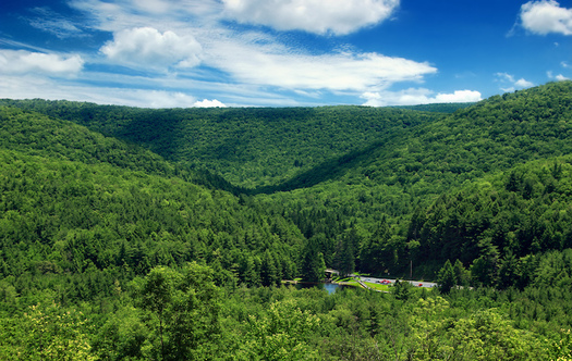 The Pennsylvania Supreme Court ruled the state must act at all times as a trustee of public natural resources. (Nicholas A. Tonelli/Flickr)