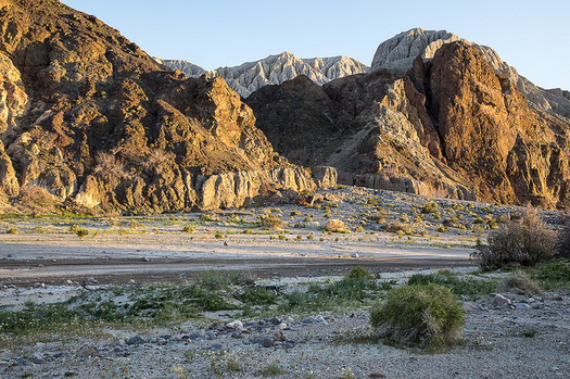 A bill in the California Legislature would provide more oversight for a potential water pumping project in the Mojave Desert. (Bob Wick/Bureau of Land Management)