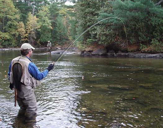 Maine has big concerns about this week's move to repeal the 2015 Clean Water Rule, for the impacts it could have on fishing, tourism and water quality. (J. Ross/Flickr)