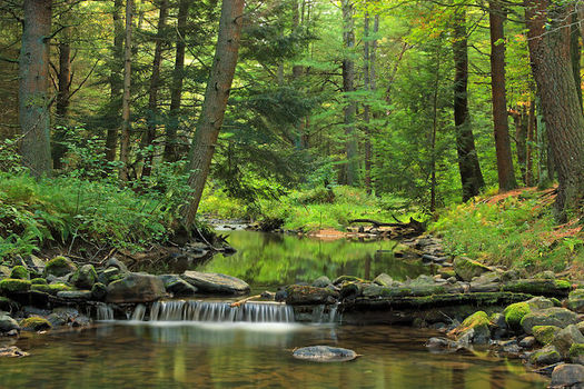 Drinking water for 63 percent of Pennsylvanians comes from sources that rely on small streams. (Nicholas A. Tonelli/Wikimedia Commons)