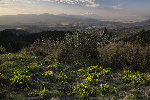 The Cascade-Siskiyou National Monument is recognized globally for its biological diversity. (Bureau of Land Management/Flickr)