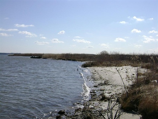 Clean drinking water in several states is reliant on government funding for  Chesapeake Bay. (Fish and Wildlife Service)