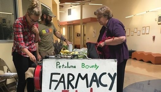 """The """"Farmacy"""" at Petaluma Health Center is a very low cost farmer's market designed to give patients access to healthy food. (Petaluma Health Center)"""