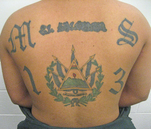 President Donald Trump has used MS-13 gang violence to justify harsh immigration enforcement, immigrant advocates say. (DHS)