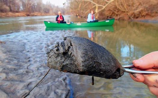 Coal ash from the bottom of the Dan River near the site of Duke Energy's spill. (Sierra Club)