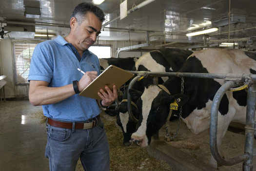 Victor Cabrera is leading a team of scientists at the University of Wisconsin trying to help dairy farmers manage the huge amounts of data they deal with. (William Graf/University of Wisconsin)