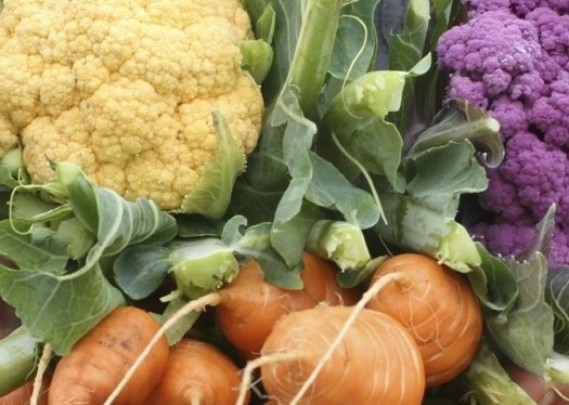 More people are looking for a way to buy locally grown nutritious foods to improve their health and support the local economy. (UW Extension)