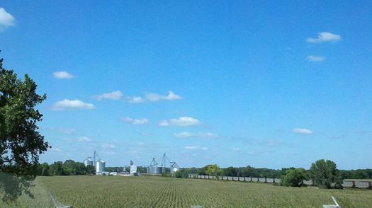 The Whole-Farm Revenue Protection crop insurance program can help Nebraska farmers. (Catherine Soehner/Flickr)
